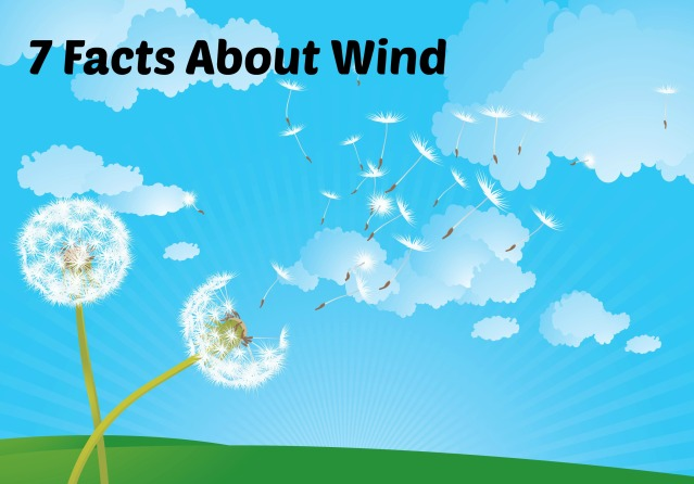 7 facts about wind