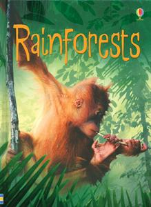 rainforests