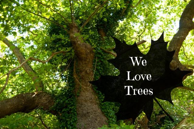 we love trees