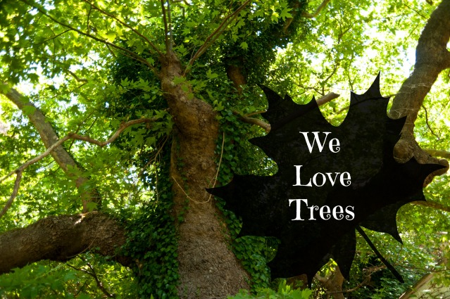 we love trees