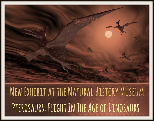 Digital visualization of flying dinosaurs
